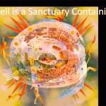 goodmerged cell sanctuary