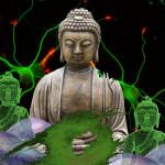 buddha fabric cells