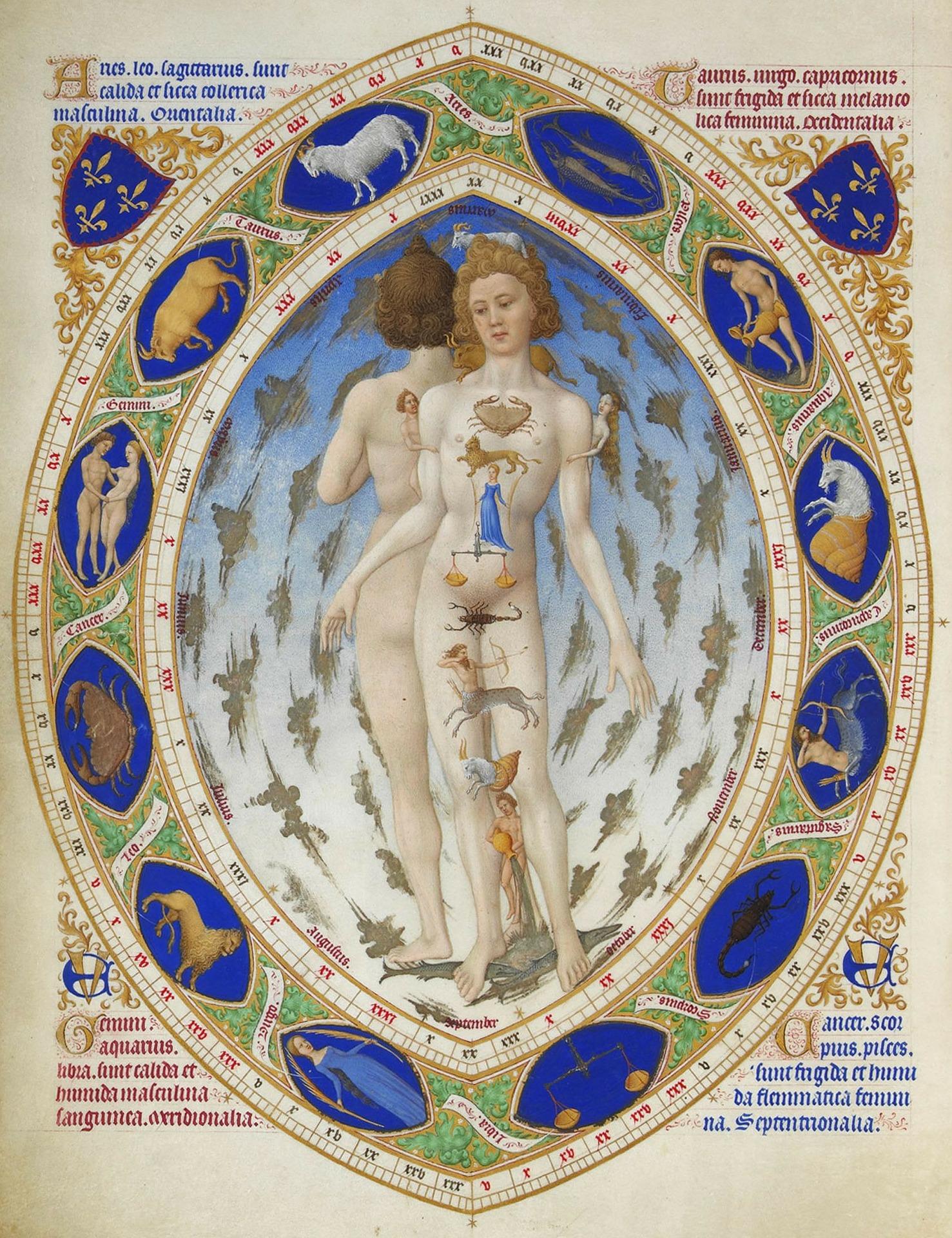Zodiac maps – the human body