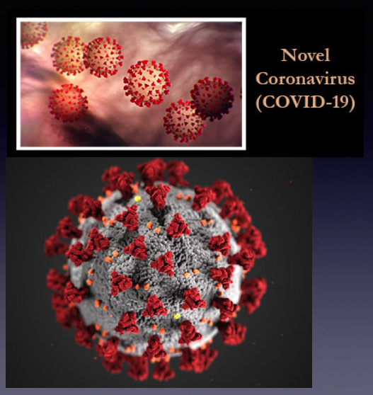 Do viruses have consciousness?